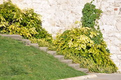 Stone stairs against the wall Royalty Free Stock Photo