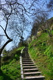 Stone stairs on the Cetatuia from Cluj Royalty Free Stock Images