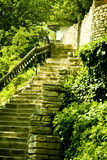 Stone stairs in countryside. Scenic view of old stone staircase surrounded by vegetation, rural scene Stock Images