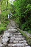 Stone stairs in the countryside Royalty Free Stock Photo