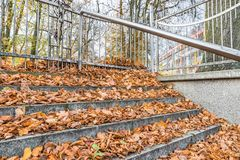 Stone Stairs covered with leaves in the autumn.  Stock Photo
