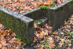 Stone stairs covered with red fallen leaves Royalty Free Stock Image