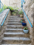 Stone stairs with flowers Stock Photo