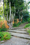 Stone stairs in the garden Royalty Free Stock Images