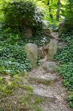 Stone stairs go somewhere. Stone stairs go into a mysterious forest full of dense vegetation and trees Stock Image
