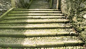 Stone stairs and green plants. stock video footage