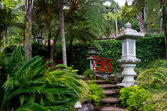Stone stairs in Japanese tropical garden Stock Photos