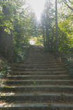 Stone stairs, Jardines de la Granja de San Ildefonso, monuments Royalty Free Stock Photo