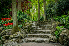 Stone stairs in Keukenhof garden Royalty Free Stock Photos