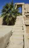 Stone stairs in luxor Stock Photos