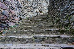 Stone stairs in a medieval castle Stock Photography