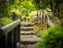 Stone stairs in Nara, Park stock image