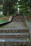 Stone stairs in the old park Stock Images