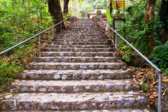 Stone stairs in park Stock Images