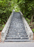 Stone stairs in the park. Stock Photos