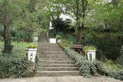 Stone stairs in the Park Royalty Free Stock Photos