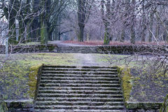 Stone stairs in the park Royalty Free Stock Images