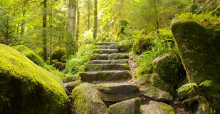 Stone stairs Stock Photos