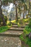 Stone stairs surrounded by huge green tree and grass at a public park in spring time, Buyukada Island Princes island, Istanbul. Ascending stone stairs surrounded Royalty Free Stock Images