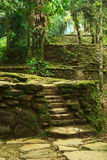 Stone Stairs and Terraces in Ciudad Perdida, Colom. Old stone stairs and terraces in Ciudad Perdida, built by the people of Tayrona. This archeological site is Royalty Free Stock Photo