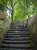 Stone stairway, Central Park, New York City Stock Photo