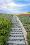 Stone stairway with flowers and blue sky Royalty Free Stock Images