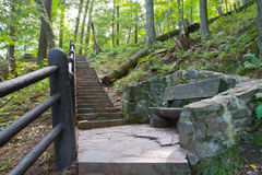 Stone Stairway in Forest Royalty Free Stock Photo