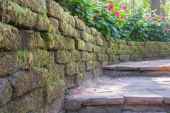 Stone stairway in the garden Royalty Free Stock Image