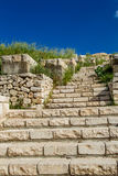 Stone stairway and meadow plants Stock Image