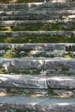 Stone Stairway. Mossy stone stairway to nowhere, In Quebec, Canada Royalty Free Stock Photography