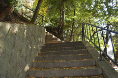 Stone Stairway in Park. Area Stock Photos
