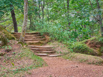 Stone Stairway in Park Stock Photo