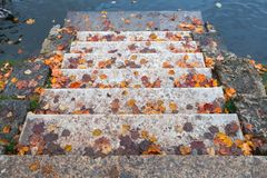 Stone stairway with red fallen leaves. Goes down to blue pond water in autumn park Royalty Free Stock Photo