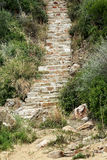 Stone stairway Stock Image