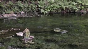 Stone statue on pond stock video footage