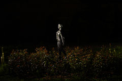 Stone statue surrounded by plants by night Stock Image
