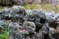 The stone of statues at rain day. The Otagi Nenbutsu ji Temple, Kyoto, Japan Stock Photos
