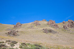 Stone steppe Royalty Free Stock Photography