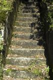 Stone steps. In the outdoor public facility Royalty Free Stock Image