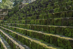 Stone steps of abandoned Mayan temple, Quirigua ruins, Guatemala. Royalty Free Stock Image