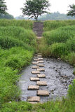 Stone steps across a river Stock Photos