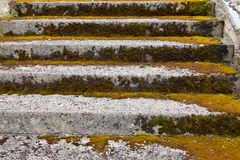 Stone steps ascending Stock Image