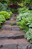 Stone steps in botanical garden Stock Photo