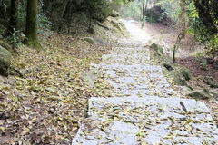 Stone steps covered with fallen leaves Stock Photo