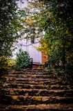 Stone steps with fallen leaves of the stairs Royalty Free Stock Image