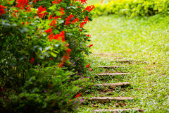 Stone steps in garden Royalty Free Stock Images