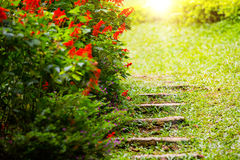 Stone steps in garden. Stone steps in the garden. Red flowers Stock Photos