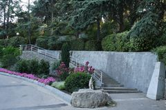 Stone steps with handrails, going up the slope with beautiful decorative plants. For your design royalty free stock photography