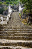 Stone steps in the jungle Stock Photos