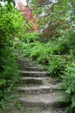 Stone steps in a landscaped garden. Royalty Free Stock Photography